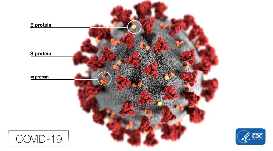 Reprodução da aparência do novo coronavírus, causador da COVID-19, em apresentação do Centro de Controle e Prevenção de Doenças dos Estados Unidos