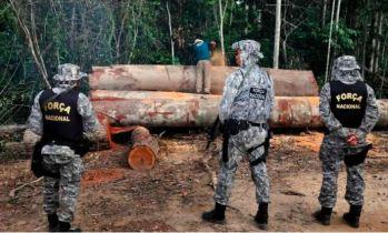 Tropas vão prestar apoio ao Ibama nas operações de fiscalização e combate a crimes ambientais
