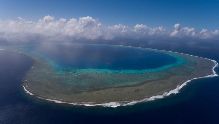 Áreas cogitadas para proteção pela Blue Nature Alliance incluem o Recife de Navatu, na região de Lau, nas Ilhas Fiji