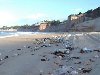 Segundo o governo do estado, até o momento não se sabe a origem do lixo trazido pela maré