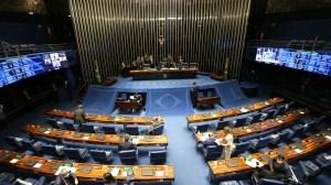 Senado derruba vetos de Bolsonaro à lei das Zonas de Processamento de Exportação