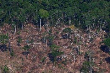 Odd Magne Rudd se reuniu nesta segunda-feira (18) com o vice-presidente Hamilton Mourão para conversa sobre o Fundo Amazônia