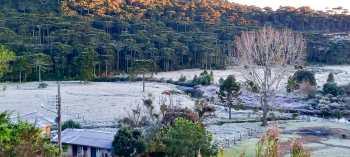 São Joaquim, em SC, teve cenas invernais em pleno outono, com direito à geada; confira as imagens