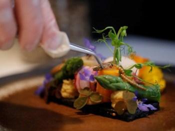 A Agência Europeia de Segurança Alimentar (EFSA) em janeiro considerou a larva-da-farinha própria para consumo humano e em maio aprovou sua venda no mercado