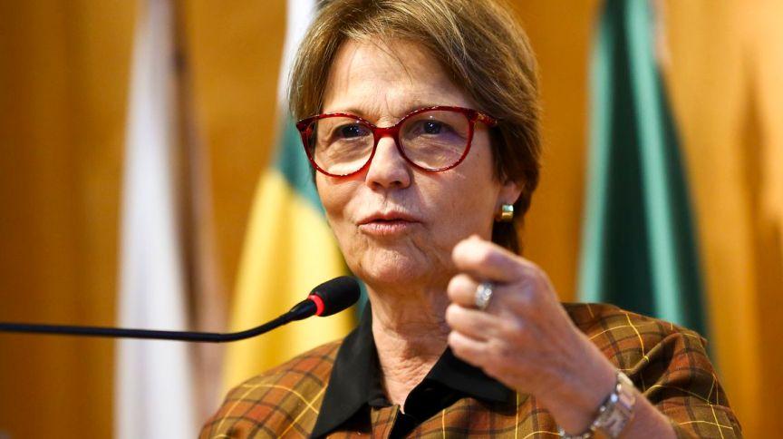 A ministra da Agricultura, Pecuária e Abastecimento, Tereza Cristina, em seminário Internacional de Seguro Rural em Brasília (23.abr.2019)