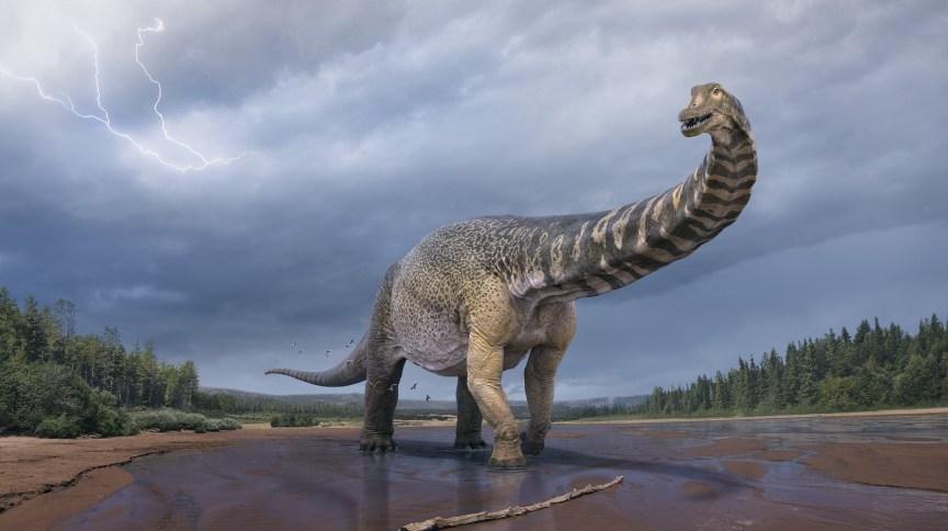 Representação artística do Australotitan cooperensis, maior dinossauro já descoberto na Austrália
