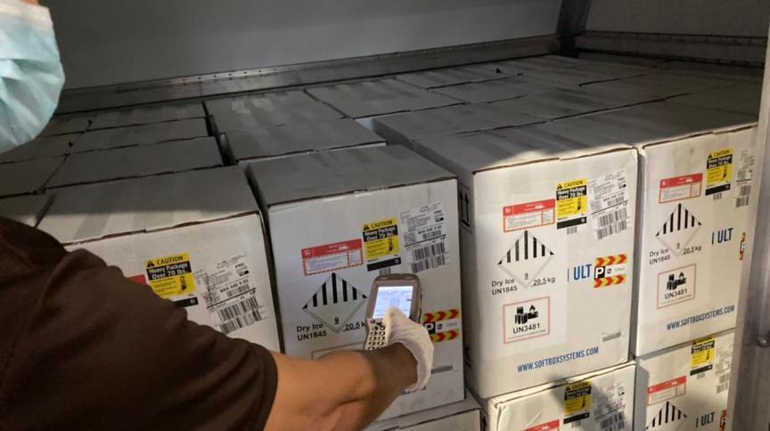 Nova remessa da Pfizer chegou no aeroporto de Viracopos (SP) nesta terça-feira (22)