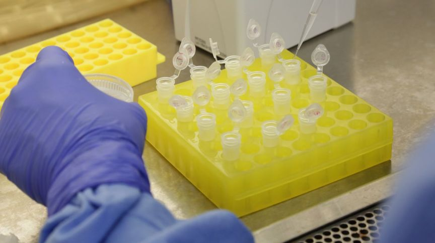 Análise laboratorial de casos suspeitos do novo coronavírus (COVID-19) no Brasil