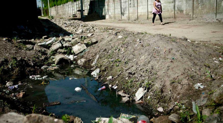 Falta de saneamento básico aumenta o risco de incidência de doenças como a ancilostomose, conhecida como amarelão