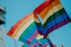 Homofobia não é brincadeira, é crime, afirma professor sobre caso Contarato
