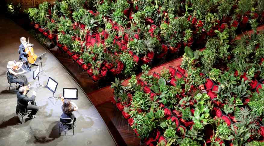 Plantas de viveiro foram colocadas nos bancos da casa de ópera Liceu de Barcelona (22/06/2020)