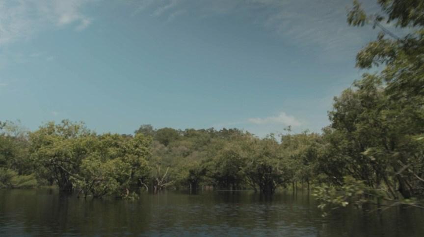 Sudam tem como objetivo gerar incentivos para o desenvolvimento da região amazônica