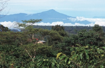 A cratera pode estar coberta de lava no Laos, país do Sudeste Asiático. Detritos do meteorito foram arremessados pela Ásia, Austrália e Antártida