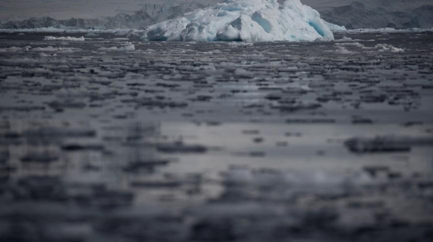 Pequenas plataformas de gelo na baía de Fournier, Antártica