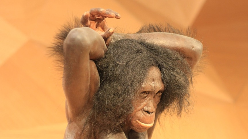 Estudos têm mostrado que os humanos modernos cruzam com os Neandertais e uma espécie relacionada, conhecida como Denisovans, há dezenas de milhares de anos