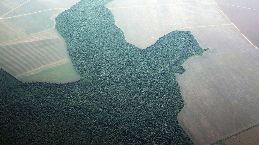 Vista aérea de zona com atividade agrícola em Alta Floresta, no Pará