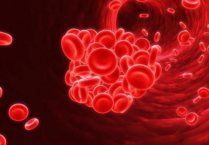 Existem dois tipos, a trombose venosa, que atinge as veias, e a trombose arterial, quando o bloqueio acontece em uma das artérias