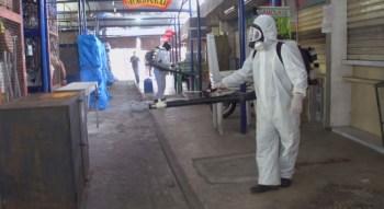 Capital de Pernambuco registra queda nos números de doenças transmitidas pelo Aedes aegypti