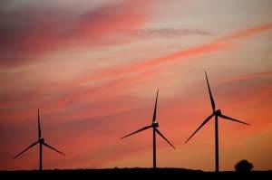 Especialistas pedem mais investimento em energia eólica no país