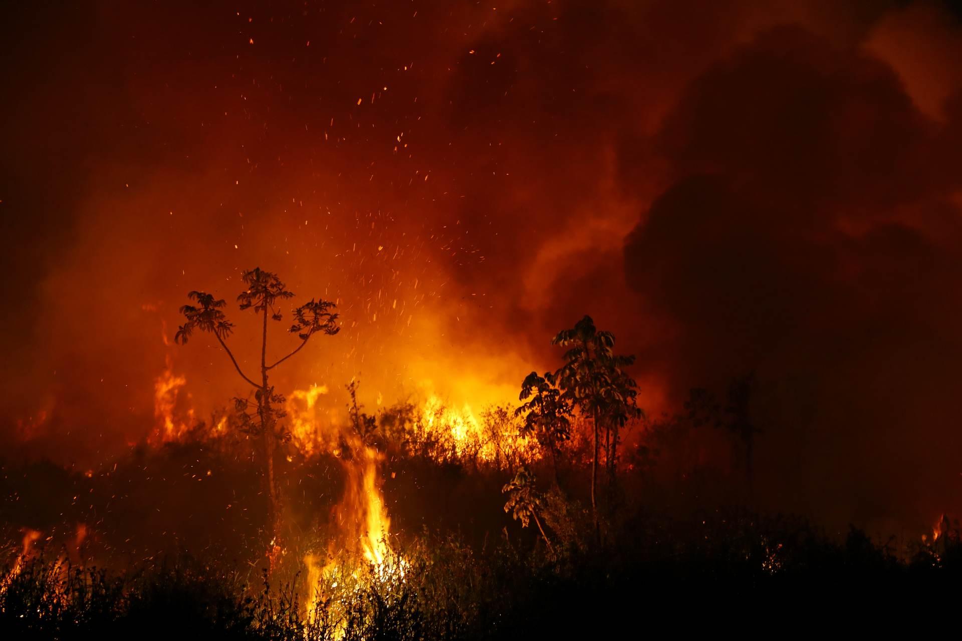 Fumaça e chamas de queimada no Pantanal, em Poconé, no Mato Grosso