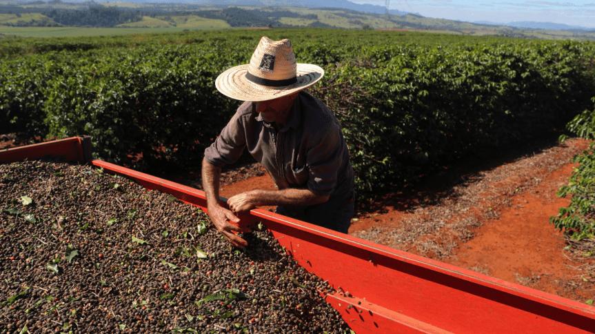 Companhia é uma das líderes do setor agrícola na América do Sul