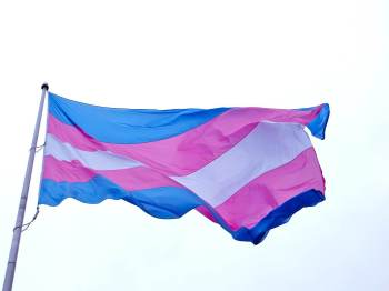 Marina Ganzarolli, presidente da Comissão da Diversidade Sexual e de Gênero da OAB-SP, fala sobre a falta de oportunidades para a população T