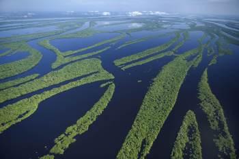 Entre as causas relatadas pelo Map Biomas estão o uso da terra, construção de barragens, poluição e uso excessivo dos recursos hídricos, além das mudanças climáticas