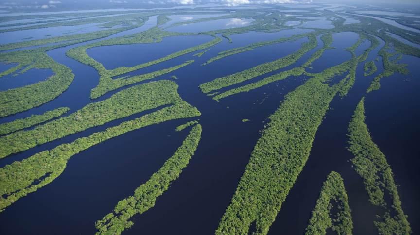 A Amazônia abriga a maior bacia hidrográfica do mundo, a Bacia Amazônica, que detém 20% da água doce do planeta