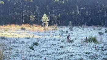 Estael Sias diz que a neve deve aparecer entre o final da noite de segunda-feira (28) e o começo de terça-feira (29)