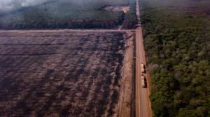 Empresas brasileiras assinam documento pelo desenvolvimento sustentável