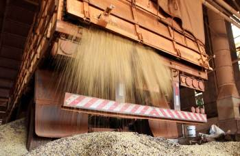 Setor foi responsável por 37% de todas as cargas registradas na plataforma FreteBras