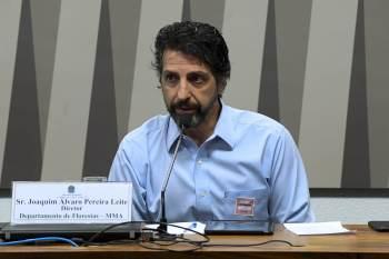 O governo brasileiro está trabalhando no plano ambiental e deve apresentá-lo até a Conferência da ONU, que acontece em novembro