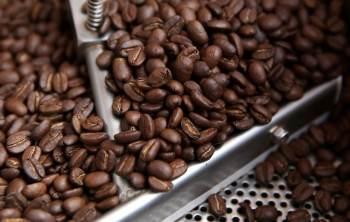 As geadas de 20 de julho foram as mais fortes desde 1994 e já danificaram até 200 mil hectares de lavouras de café