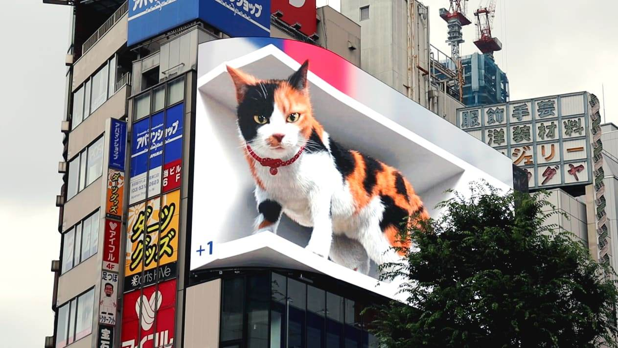 Telão gigante mostra gato hiper-realista/Divulgação