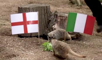 Final do campeonato acontece neste domingo (11) entre ingleses e italianos