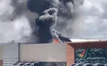 Segundo o Corpo de Bombeiros, fogo foi controlado pelos próprios brigadistas do local; ninguém ficou ferido