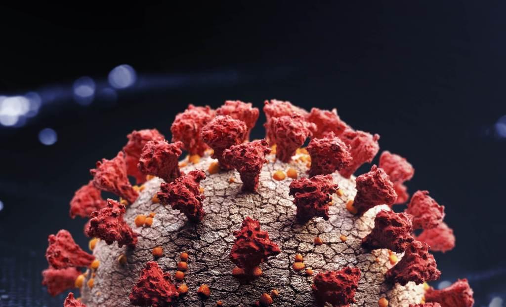 Coronavírus; Covid-19