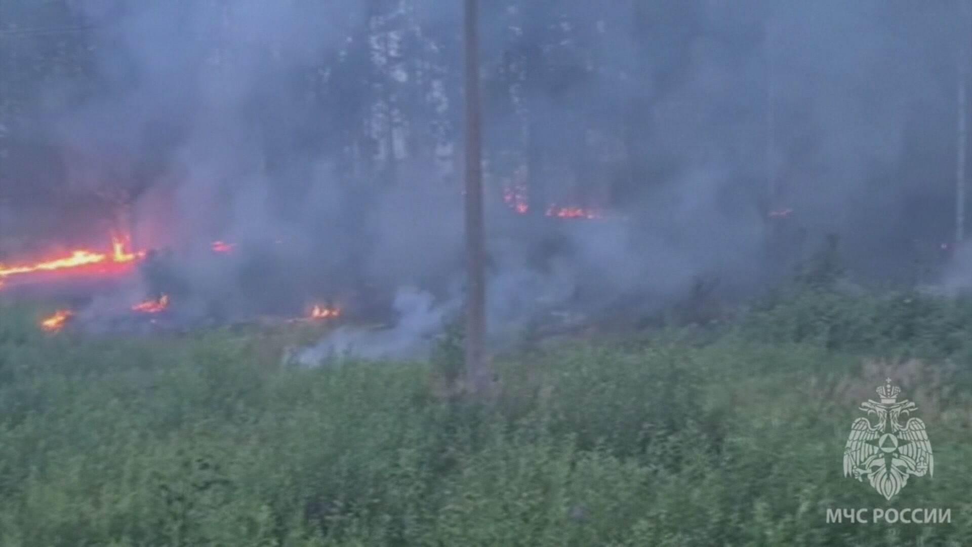 Aumento de temperatura acima do normal provou mais de 400 incêndios florestais