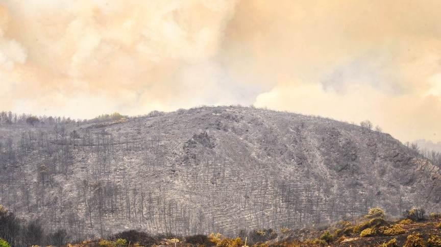 Zona queimada após queimadas históricas em Sardinia, uma das ilhas da Itália
