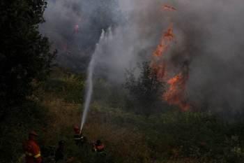 São Paulo, por exemplo, até o dia 11 de agosto, registrou 356 focos de incêndio. Em 2020, no mesmo período, foram registrados 269