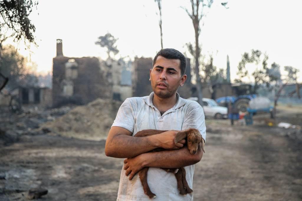 Filhote de cabra é resgatado em Antalya, na Turquia, durante incêndio florestal