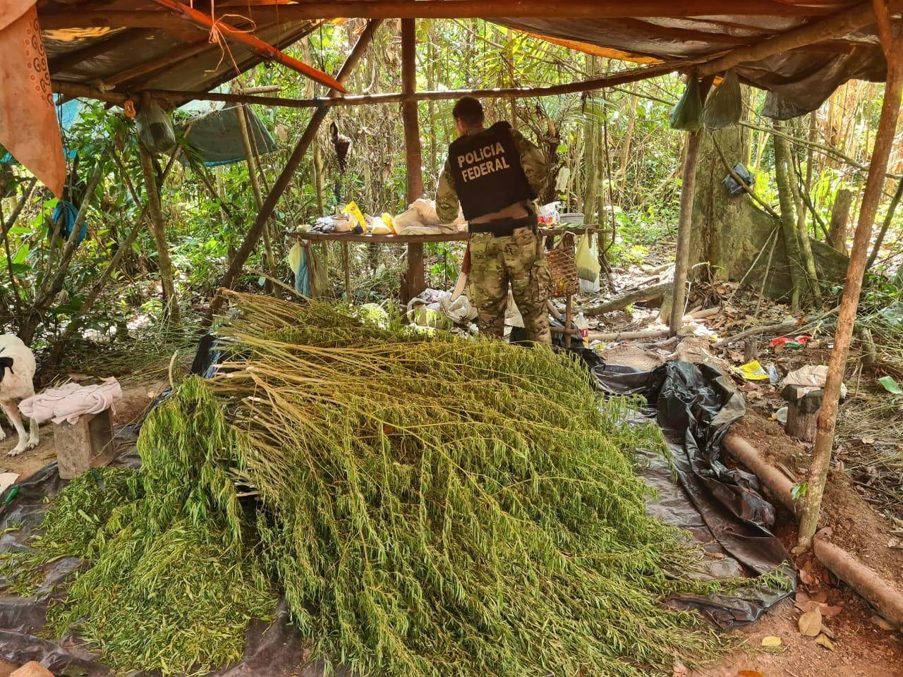Operação Fusarium, da Polícia Federal, no estado do Maranhão