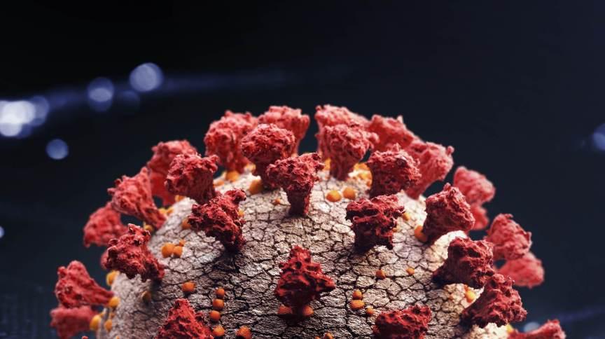 Representação artística do novo coronavírus