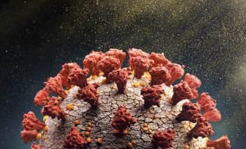 Entre os resultados, foi possível classificar os grupos de risco de pessoas infectadas pelo novo coronavírus além da idade e das comorbidades associadas a outras doenças
