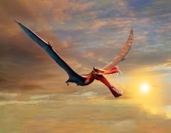Fóssil de pterossauro com envergadura de asas de quase 7 metros é a descoberta mais próxima de um dragão da vida real, dizem cientistas