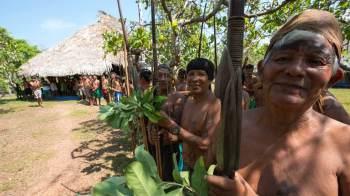 Obra atravessa terra indígena e vai ligar Roraima ao sistema nacional de energia; indígenas listam 27 impactos irreversíveis