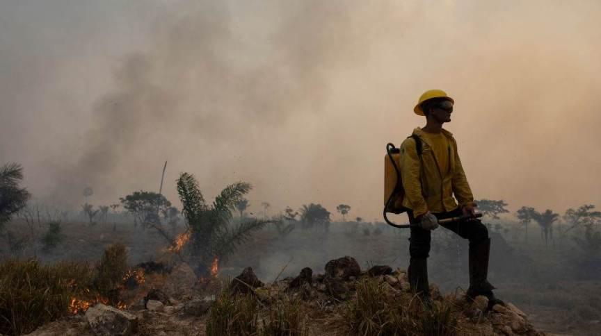 Funcionário do Ibama combate o fogo na Amazônia em Novo Progresso (PA)