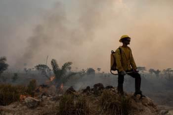 Mapeamento apontou que o Brasil teve quase 20% de seu território queimado entre 1985 e 2020