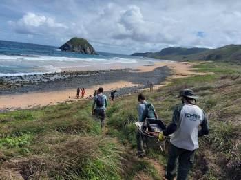 Governo enviou o material para análise e informou, em nota, que segue monitorando as praias no Parque Nacional