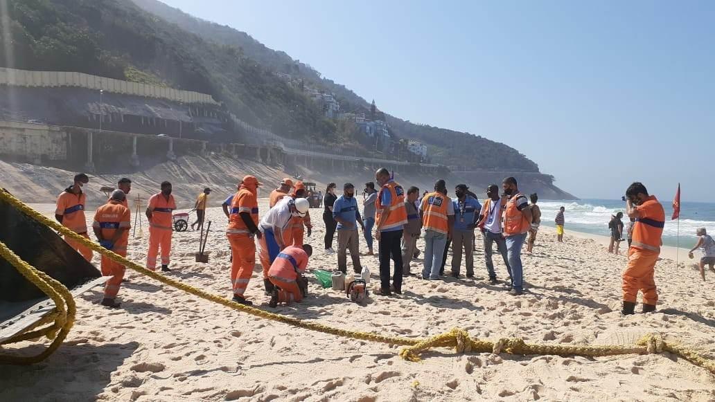 Equipes resgataram animal na praia carioca